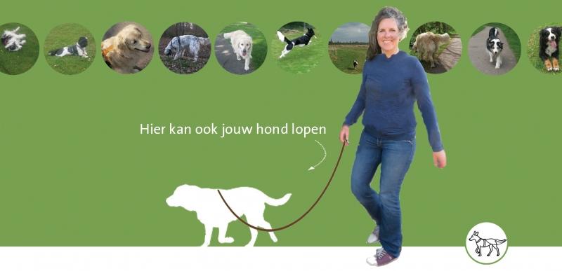 Honden Beusichem - e.o. / uitlaatservice en training